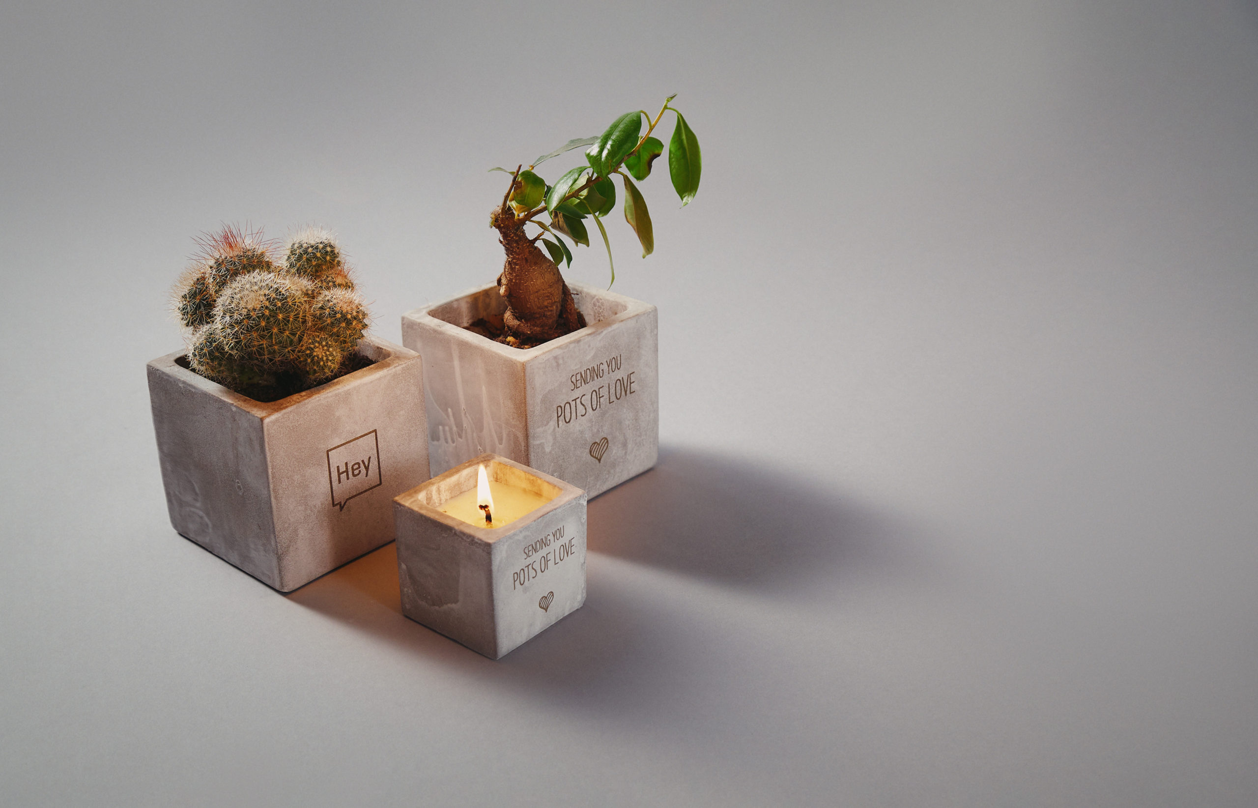 Promotional wellbeing candles and plants